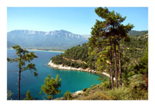 The Greek island of Thassos pinned from http://www.greece-travel-secrets.com/Quick-Guide-to-Greece.html