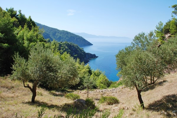 Alonissos in the Sporades Islands of Greece, pinned from https://www.greece-travel-secrets.com/Alonissos.html